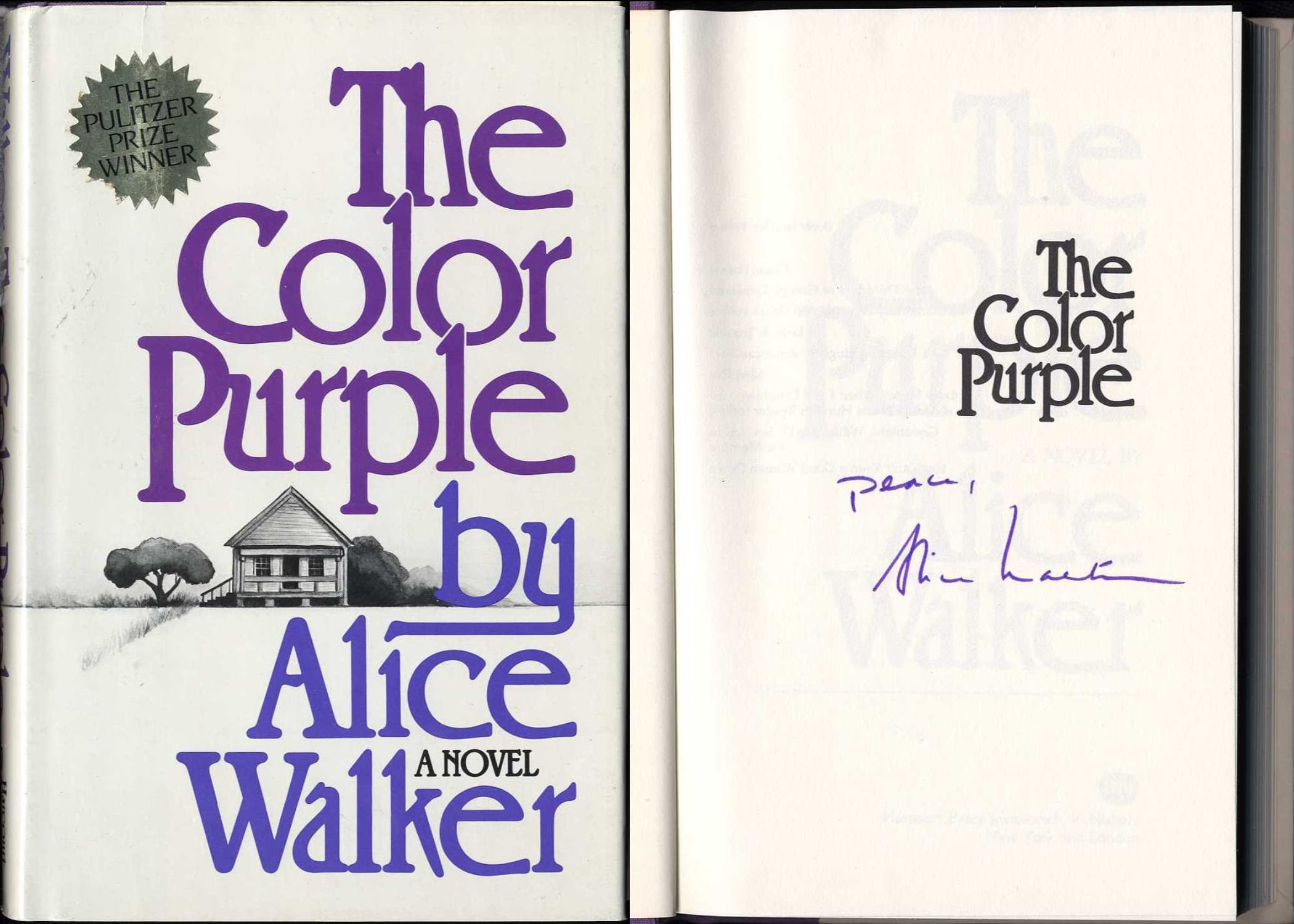 the struggle for independence in the color purple by alice walker The color purple by alice walker themes in the novel feminism the novel deals with the struggle her independence, strength.